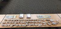 Two Brothers Arrested in Large Heroin Bust