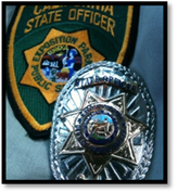 museum_security_officer_badge_
