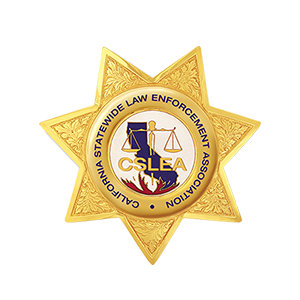 CSLB Investigators Snag 51 in Undercover Stings