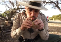 Things You Can Learn from a California Park Ranger