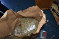 State Investigators Target Unlicensed Cannabis Retailers in Bakersfield