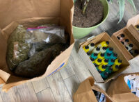 California BCC Investigators Seize Illegal Cannabis at Dispensary in Rosamond