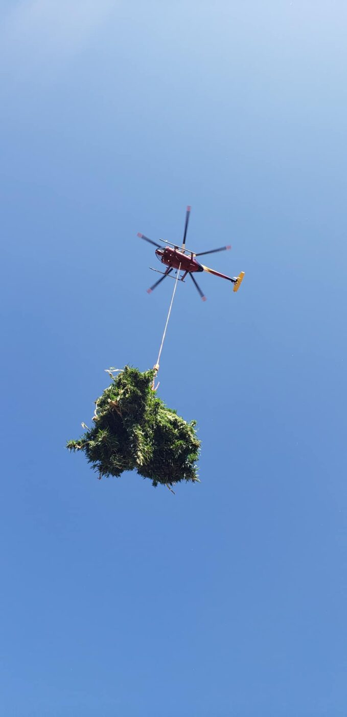 CA DOJ & CDFDW Assist with Illegal Marijuana Cultivation Investigations in Riverside County